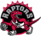 1996: The Toronto Raptors logo